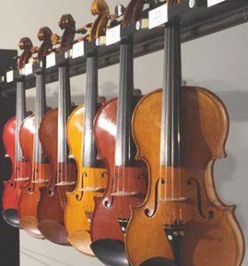 esposizione di violini